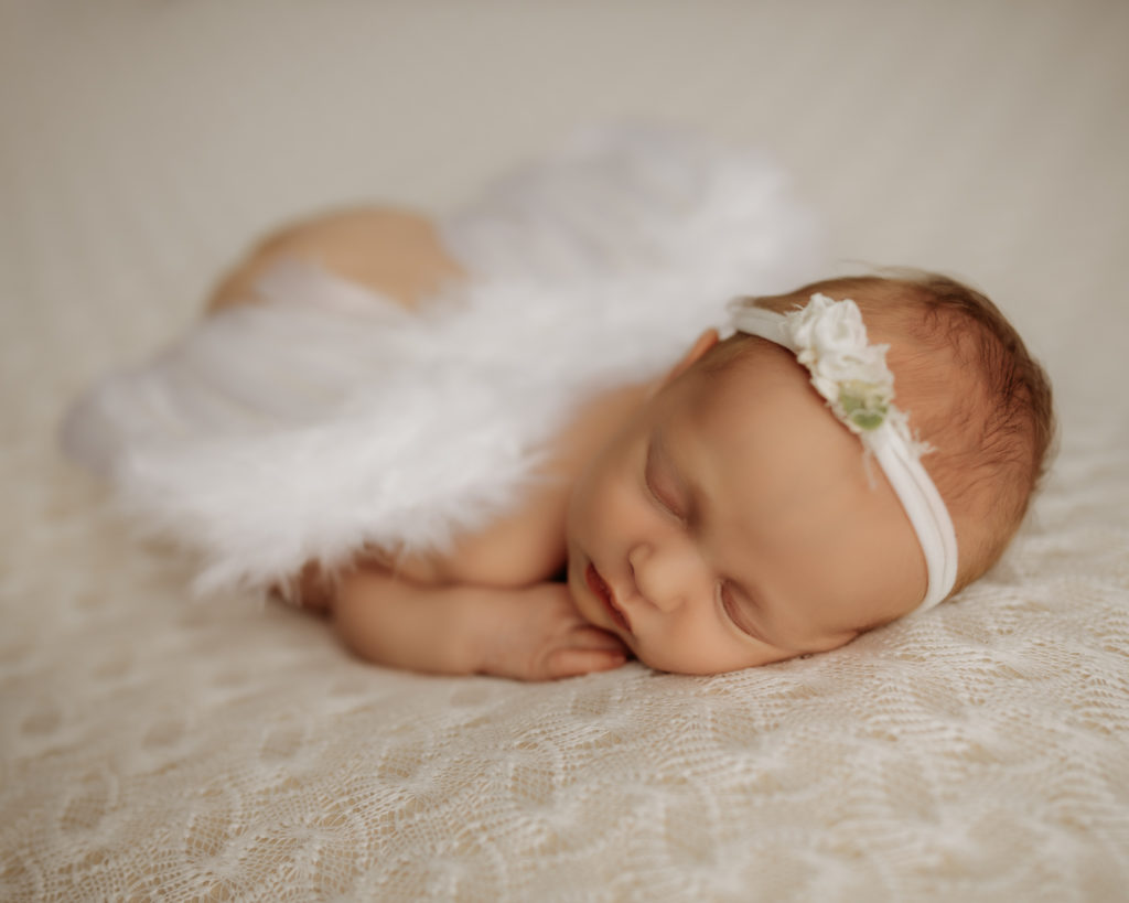 newborn posed on belly on white backdrop with angel wings on her back